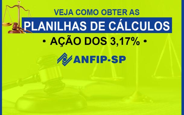 Processo dos 3,17%: veja como obter as planilhas de cálculos com a Anfip e o Sindifisco Nacional