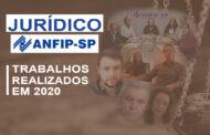 Departamento Jurídico da ANFIP-SP informa atividades realizadas em 2020